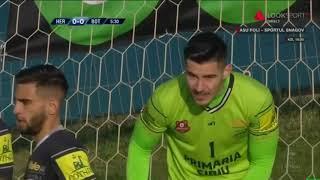 FC Hermannstadt - FC Botosani: Cabuz scoate de sub transversala (5)Liga 1 Etapa 15