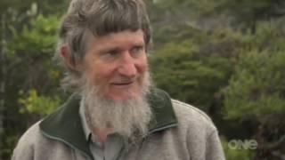 Дикая природа Новой Зеландии.HD качество.