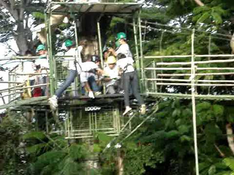jaymee mendoza treetop adventure