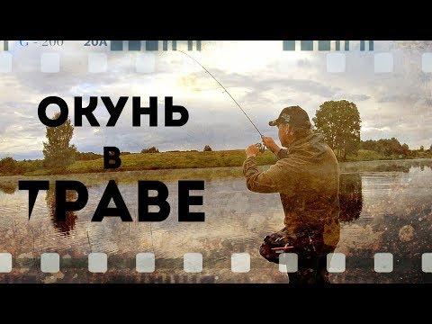 Супер динамичная рыбалка. Ловля окуня в траве