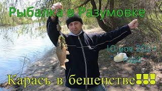 Рыбалка в Разумовке Запорожье 10 мая 2021 год Бешенный клев карася