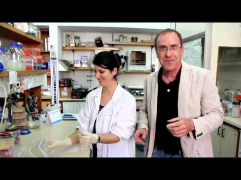 A Visit at a Plant Biology Lab | Prof. Daniel Chamovitz