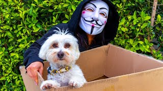 HACKER STEALS PUPPY 😱 (PROJECT ZORGO)