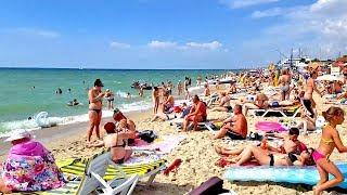 ЗАТОКА 2018 Море Пляж Отзыв