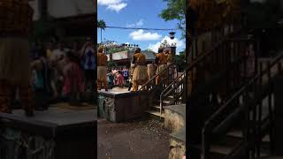 African music in Animal Kingdom