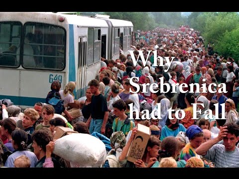 Why Srebrenica had to Fall (2015)