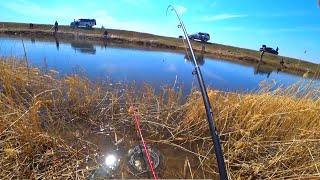 Рыбалка в Запрет Озеро Майбалык Карась на Поплавок Рыбалка в Казахстане