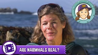 Ask Tierney - Are narwhals real?