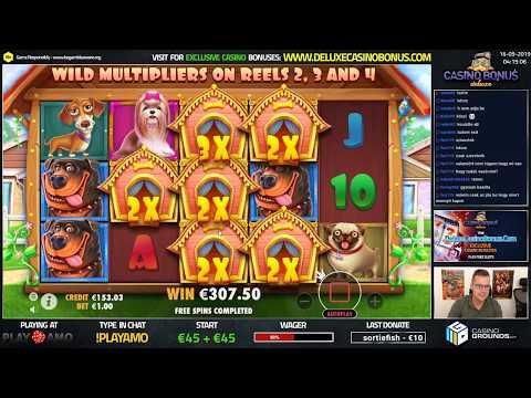 Laden Sie ein Pokerspiel herunter WMV