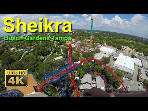 Busch Gardens Tampa Sheikra Diving Roller Coaster Front Seat On Ride Ultra HD 4k POV
