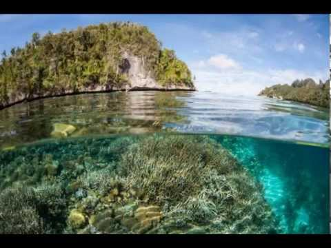 Tourism Raja Ampat, Papua tourist most exotic