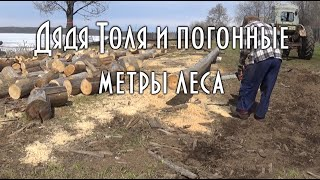 Дядя Толя и погонные метры леса