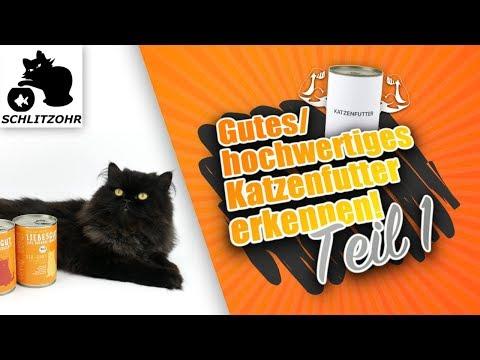 Gutes Katzenfutter - hochwertiges Katzenfutter erkennen! Deklaration & Zusammensetzung verstehen