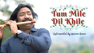 Tum Mile Dil Khile   Instrumental by Naveen Kumar