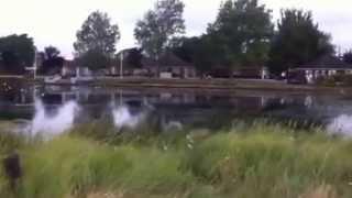 Fishery Creek 3