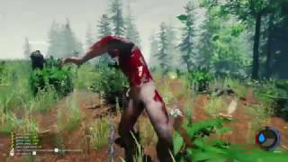 The Forest 0.59b - Dedicated Server (raw gameplay)(, 2017-04-20T21:24:38.000Z)