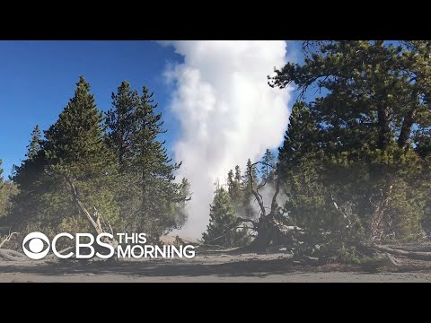 Long-dormant Yellowstone geyser spews decades-old trash