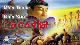 Bạn muốn biết KIẾP TRƯỚC và KIẾP SAU của mình hãy xem video này p3   Những Lời Phật dạy