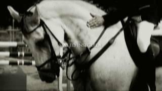 Sei un Cavaliere, guarda in Alto. | Equitazione.