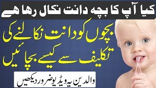 Baby Teething | Bachon Ke Dant Nikalna | Home remedies for Teething Problems | بچوں کے دانت کی تکلیف
