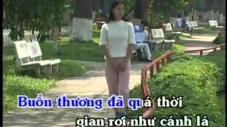 Buoc chan tinh xa - Dan Truong[Official]