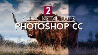 Cara mudah install LUTs di Photoshop CC || free LUTs pack