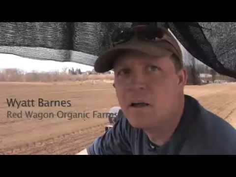 VIDEO: Red Wagon Organic Farm