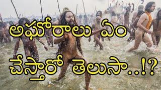అఘోరాలు ఏం చేస్తారో తెలుసా..?  Aghori Baba- Unbelieveable Activity- Must See