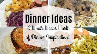 Dinner Ideas I What's for Dinner? I Dinner Inspiration I What we had for dinner this week I
