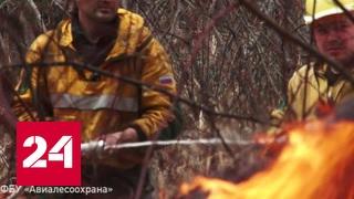 В Сибирь пришел огонь(, 2017-04-29T15:22:20.000Z)