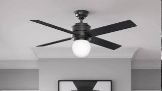 Hunter 59321 52 in. Hepburn Matte Black Ceiling Fan with Light with Wall Control