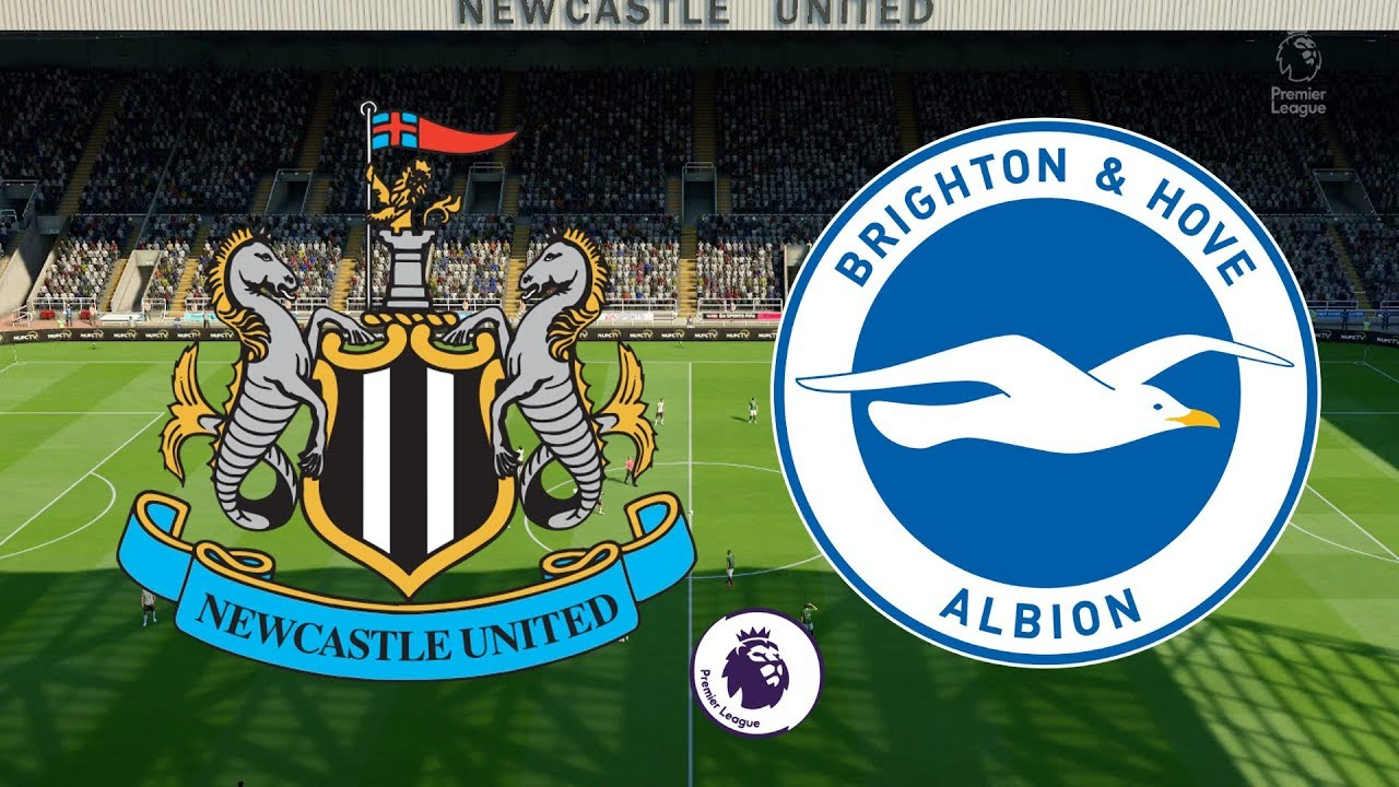 Image result for newcastle vs brighton
