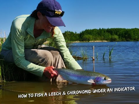 How To Fish A Leech & Chironomid From Shore