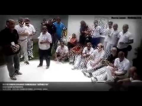 Capoeira explica o Brasileiro e simplifica a inclusГЈo social
