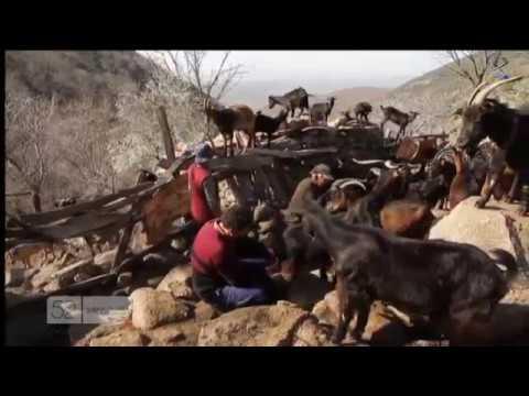 Los  Pastores  del Tiempo/2013/Canal Extremadura/España