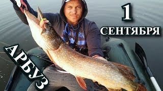 Осіння рибалка і божевільні покльовки! 1 вересня порадувало!)