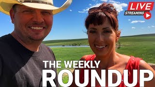 The Weekly Round Up - Haying Continues, Mail Call and a Viewer Poll