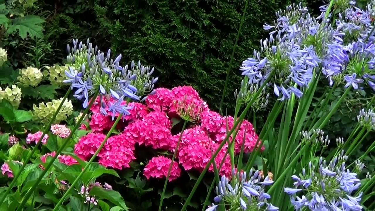 la ferme fleurie dordogne 24