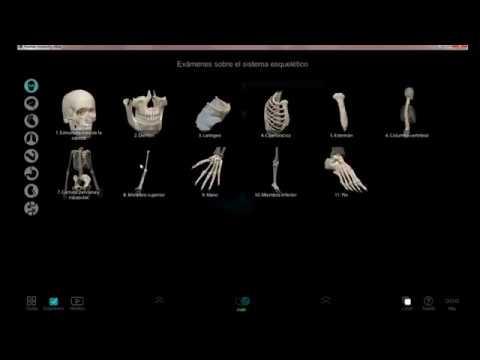 Como descargar e instalar programa de anatomía en 3D - YouTube