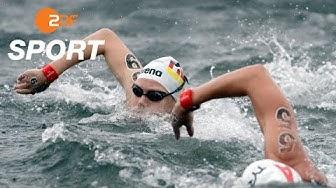 Wunram holt Silber, Top-Ten-Plätze für die Männer - Freiwasser, 25 km | Schwimm-WM 2019 - ZDF