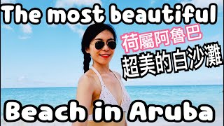 Siren TV Vlog????Aruba Manchebo white sand beach 加勒比海阿魯巴超美的超美的白沙灘The most beautiful beach 中美洲自由行