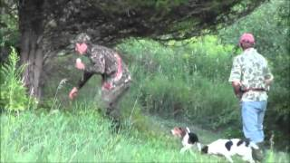 Hunting.Running the Hounds 8-8-13