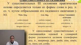 Лекция: «Имя существительное. Латинские несогласованные определения в медицинской терминологии».