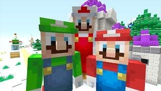 Minecraft Wii U - Super Mario Series - Mario