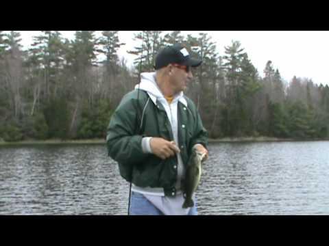 MAINE BASS FISHING TBC PRO STAFF TIPS