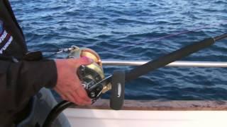 Запрет на рыбную ловлю в 2018 году в Московской области ...
