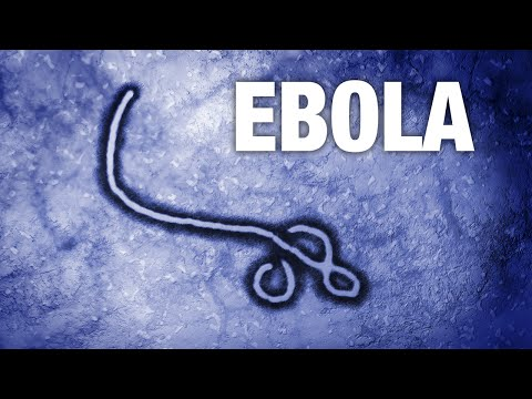 Ebola Caused More Freak Outs Than Outbreaks In 2014