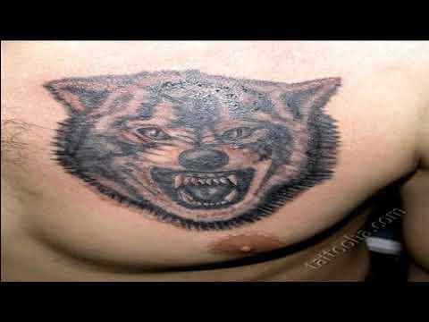 Что означает тюремная татуировка с изображением волка