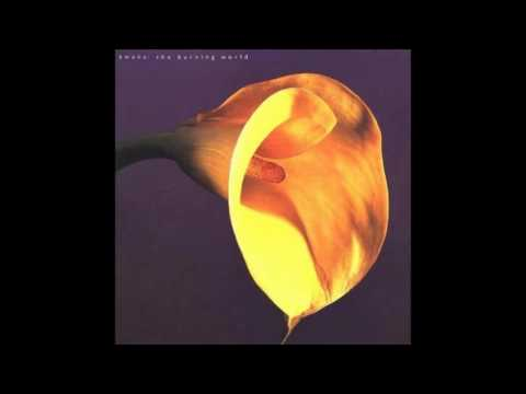 Swans - The Burning World 1989 (full album)
