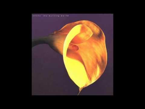 Swans - The Burning World 1989 (full album)